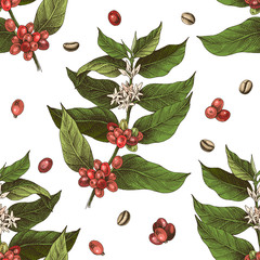 Seamless pattern with colorful hand drawn coffee tree branches and beans