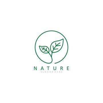green leaf logo vector icon