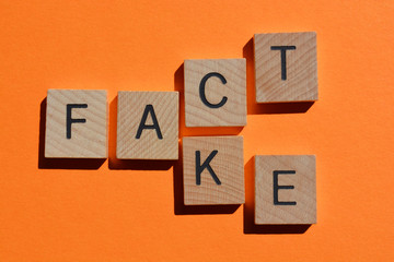 Fact and Fake, words isolated on orange background
