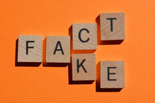 Fact and Fake, words isolated on orange background