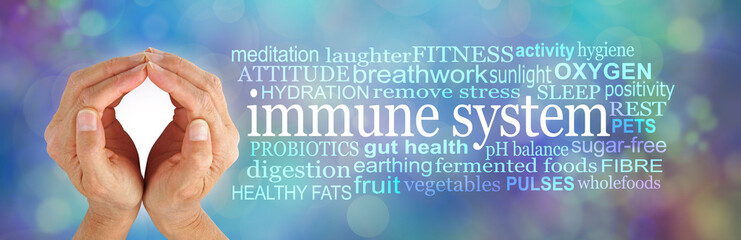 How to SHIELD and boost your Immune System Word Cloud -  female cupped hands beside an IMMUNE SYSTEM word cloud on a  multicoloured bokeh wispy cellular theme background Wall mural
