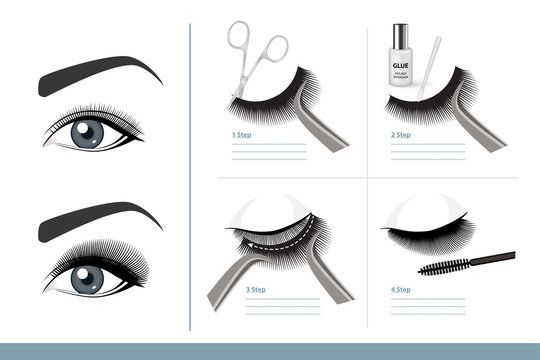 How to Apply False Eyelashes Step by Step Properly. Full Tutorial on Application. Guide. Infographic Vector Illustration