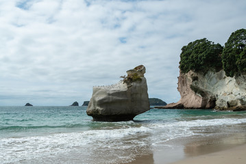 Printed roller blinds Cathedral Cove Rock in sea with cloud at Cathedral Cove in Coromandel Peninsula New Zealand