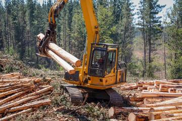 Logging Equipment Forest Machine