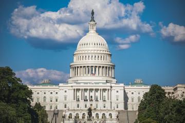US Capitol Building in Washington, DC Fotomurales