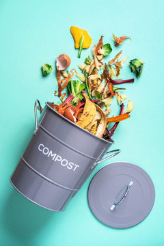 Trash bin for composting with leftover from kitchen on blue background. Top view. Recycling scarps concept. Sustainable and zero waste lifestyle