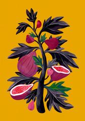 Illustration of fig tree