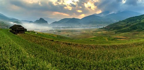 Autocollant pour porte Les champs de riz Panorama Rice terraces in Mu cang chai,Yenbai,Veitnam.
