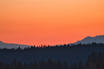 Tuinposter Koraal Sonnenuntergang