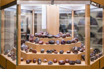 Geology display of polished rocks in natural history museum