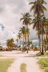 Little beautiful village in Zanzibar