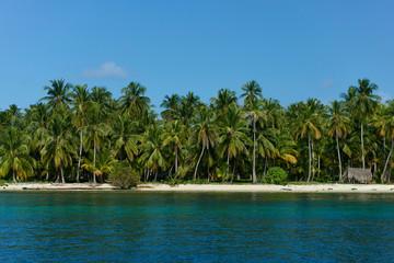 Paradise Fototapete