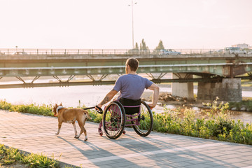 Happy young man in wheelchair enjoying his daily routine with his dog