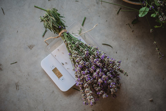 A bouquet of lavender weigh on scales on the floor