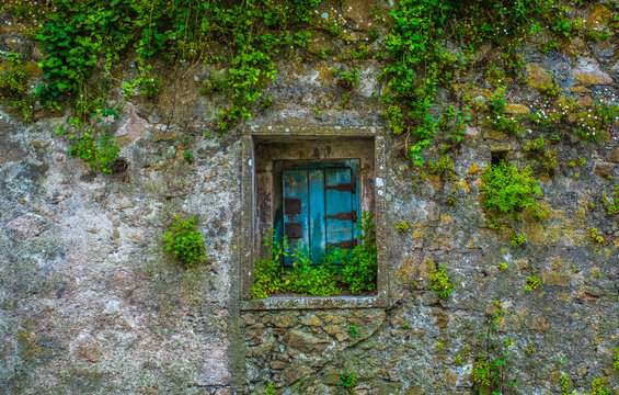colorful old wall and window