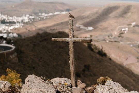 Little bird sitting on wooden cross in mountains.