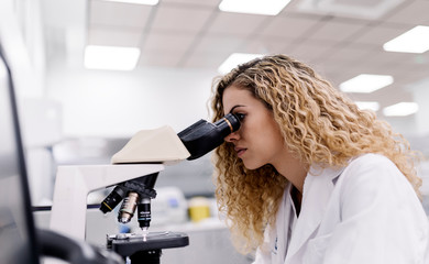 Biologist working in a laboratory