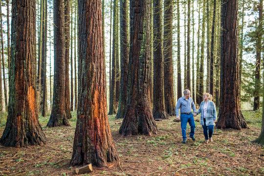 Older couple enjoying life, holding hands walking in forest.