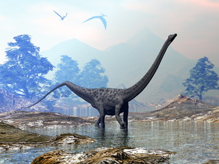 Diplodocus dinosaur walking peacefully in the water by sunset - 3D render Wall mural