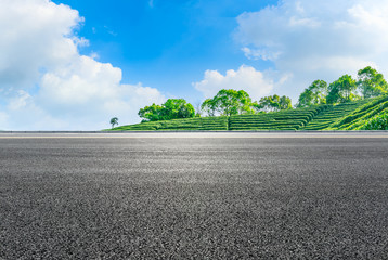 Zelfklevend Fotobehang Grijs Asphalt road and green tea mountain nature landscape on sunny day.