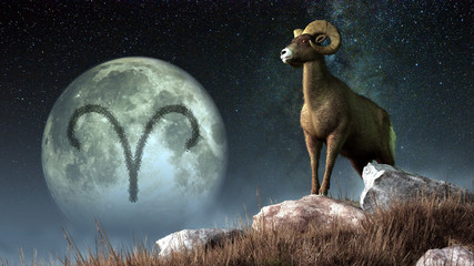 Aries is the first sign of the Zodiac. People born between March 20th and April 19th have this astrological sign. Its symbol is the ram. 3D rendering