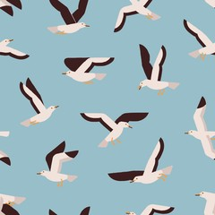 Canvas Prints Pattern Cartoon colorful flight marine bird seamless pattern. Atlantic seabird creature enjoying freedom on blue background. Flying seagull vector flat illustration. Polar north natural wildlife