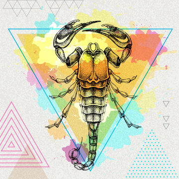 Hipster realistic scorpion illustration on artistic polygon watercolor background. Scorpio zodiac sign