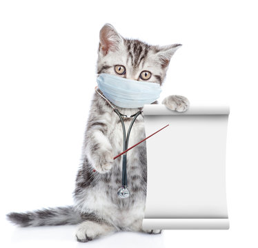Kitten wearing medical mask points on empty list. Isolated on white background