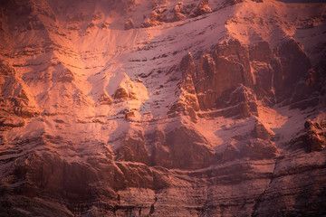 Foto op Aluminium Koraal Detail of the mountain during sunrise with the fresh snow, Canadian Rockies