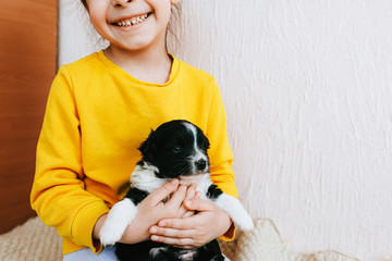 Cropped indoor image of a smiling broadly happy child playing at home with a little dog. Cute little girl cares about the puppy. Adorable kid playing with her pet at the carpet in the room.