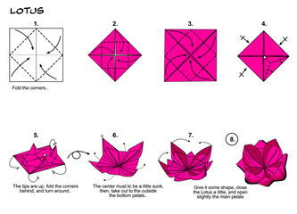 Origami lotus flower diagram paper folding steps
