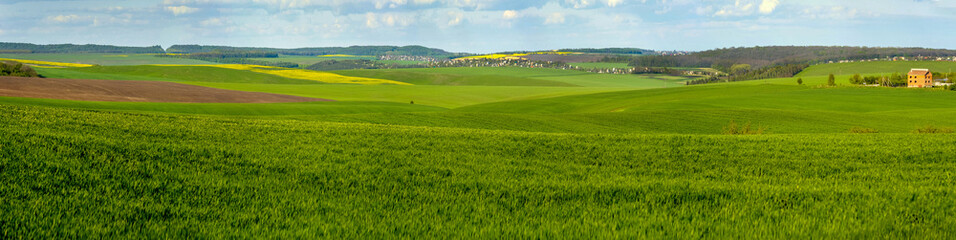 Keuken foto achterwand Pistache panoramic view of green field full of wheat, colorful slopes at spring time