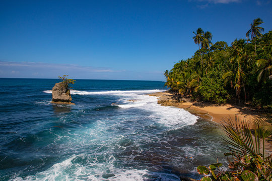 National Park of manzanillo in Costa Rica at the caribbean