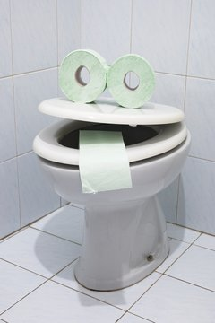 Toilet paper and bowl fun art photography
