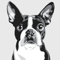 illustration of a dog in the style of pop art