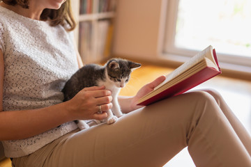 Woman reading book and cuddling kitten