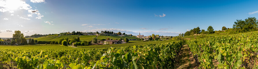 Panorama de Saint Emilion en été Fototapete
