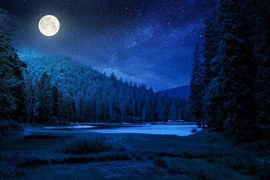 lake summer landscape at night. beautiful scenery among the forest in mountains in full moon light