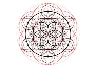 Seed of life symbol Sacred Geometry.  Geometric mystic mandala of alchemy esoteric Flower of Life. Vector divine meditative amulet isolated on white background Fototapete