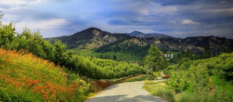 Panoramic view of winery near Leavenworth,Washington