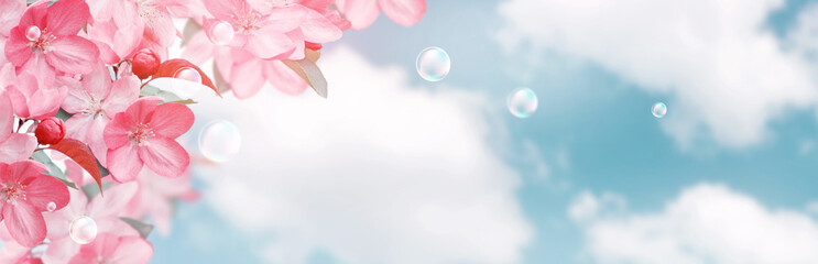 Stores à enrouleur Fleuriste Pink sakura flowers and soap bubbles against the clouds sky
