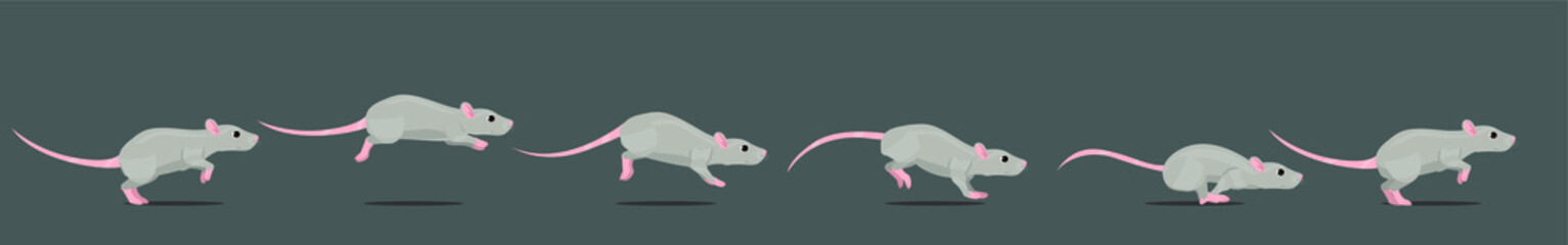 Mouse or rat running animation loop. Animated 2D character in a cartoon style.