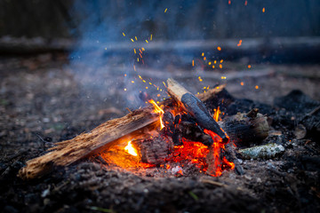 Campfire with sparks in forest outdoor camping