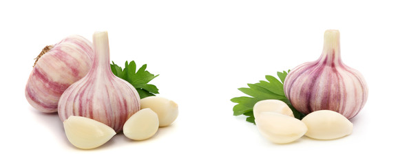Garlic with leaves of parsley isolated on white Wall mural