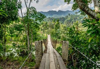 Naklejka premium Drewniany most wiszący w niesamowitej dżungli Bukit Barisan Leuser