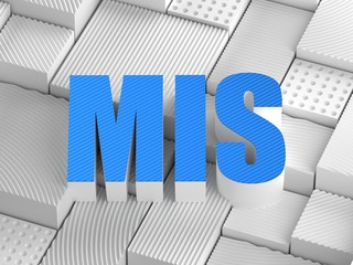 MIS acronym (Management information system)