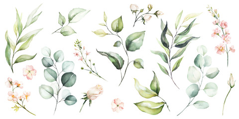 Watercolour floral illustration set. DIY flower, green leaves elements collection - for bouquets, wreaths, arrangements, wedding invitations, anniversary, birthday, postcards, greetings, cards, logo. Fototapete