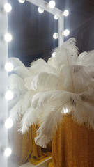 Poster Struisvogel Decorative ostrich feathers on a gold table next to a make-up mirror