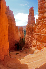 Photo sur Aluminium Brique Bryce Canyon National Park located in southwestern Utah.