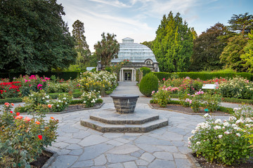 Christchurch, New Zealand - Feb 11, 2020: The beautiful rose garden with Cuningham, Townend and Garrick House at Botanic Gardens Conservatory.